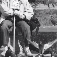 В Омске пенсионера с потерей памяти нашел кондуктор