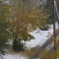 На этой неделе в Омске ожидается мокрый снег