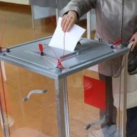 С 31 января омичи могут сообщать о выбранном избирательном участке
