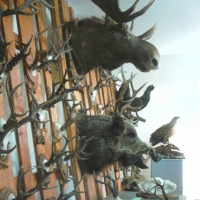 В Омской области задержали браконьера