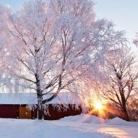 В Новый год омичей поджидает мороз