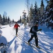 На Иртышской набережной откроют лыжную трассу