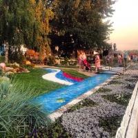 В Омске с «Флоры» украли скамейку и выкопали хвойные деревья