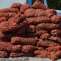 В Омской области почти на 100% выполнен план по уборке зерновых