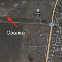 Жители Омска решили пожаловаться перед приездом Путина