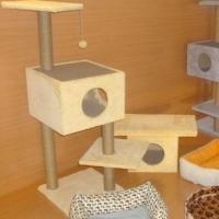 Домики для кошек по демократичной цене начали делать в омской ИК-12