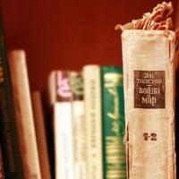 На фестивале «Уникальный Омск» любители чтения через гаджеты смогут скачать себе электронные книги