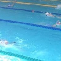 Омский пловец стал третьим на первенстве России