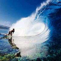 В России пройдет первый Чемпионат по серфингу