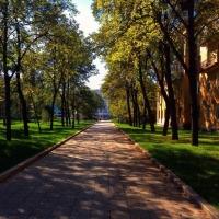 В Омской области бабье лето пробудет еще несколько дней