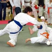 Бесплатные школы карате  откроются на базе молодёжных клубов