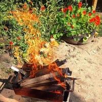 В Омской области на четыре дня объявлено штормовое предупреждение по пожарам