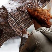 О сильном ветре МЧС оповестило омичей
