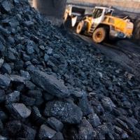 Жители Омской области украли из Терпенья почти две тонны угля
