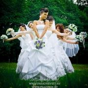 На День города в Омске пройдет свадебный парад