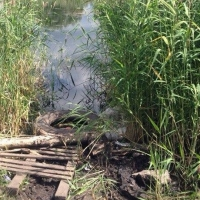 За 300 рублей омичи смогут порыбачить в озере парка 30-летия ВЛКСМ