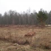 Жители Омской области нашли на кладбище пять ящиков с биоотходами