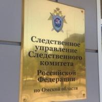 В Омской области сын изрезал женщину скальпелем за отказ дать ему деньги