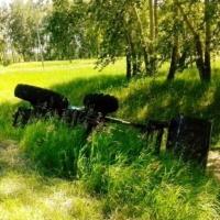 В Омской области пьяный механизатор перевернулся на тракторе в кювет