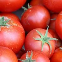 В Омской области задержали 10 тонн челябинских томатов