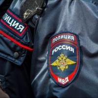 Расстрелом собак в Омске занялась полиция