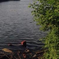Уголовное дело завели на водителя иномарки, съехавшего в реку в Омской области