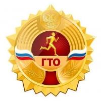 Завтра в Омске откроют городской центр тестирования ГТО