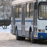 Омичам объяснят, зачем из транспортной сети уберут 470 автобусов и 27 маршрутов