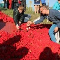 """В День Победы в Омске пройдет флешмоб """"Звезда Героя"""""""