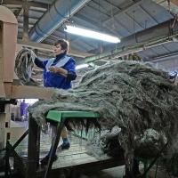 Бурков заявил, что завод по глубокой переработке льна нужно строить на севере Омской области