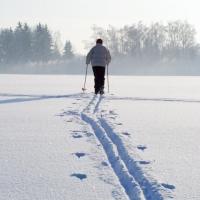 Зимой омичам будут доступны 105 лыжных трасс