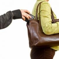 Суд рассмотрит дело омского депутата, укравшего кошелёк