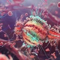 За полгода в Омске заразились ВИЧ 1012 человек