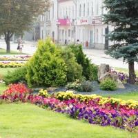 К 300-летию Омска высадят один миллион цветов