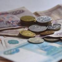 В  Омской области ввели дополнительные льготы по налогам для бизнесменов