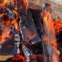 В Омской области во время пожара погибли мать и сын