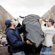 Контроль за вывозом мусора