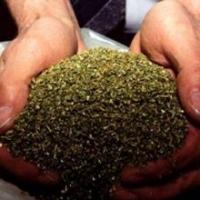 Омского экс-полицейского осудили за хранение гашишного масла