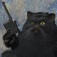 В Омске кот помог задержать вооруженного рецидивиста