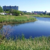 Юные омичи вынесли несколько сотен мешков с мусором с водоемов Ленинского округа