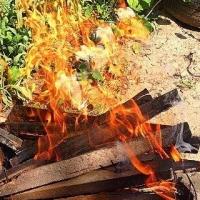 В Омске во время пожара на даче погибли четыре человека