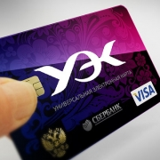 Омичи выстраиваются в очередь за универсальными электронными картами