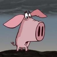 В Омской области погибших от чумы свиней заменят птицей и коровами