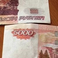 Омские полицейские задержали члена банды фальшивомонетчиков