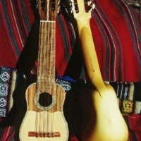 На «Покровскую ярмарку» в Омск привезут боливийские музыкальные инструменты