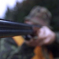 Омский браконьер застрелил отца вместо косули