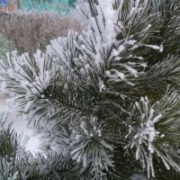 После плюсовой температуры в Омской области немного похолодает