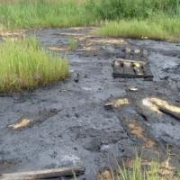 В Омске разлитый мазут может привести к экологической катастрофе