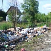 В Омской области начали штрафовать юрлица за неправильное обращение с мусором