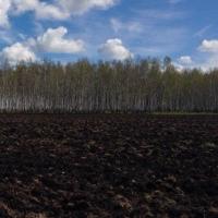 Аграрии омского региона начнут активный весенний сев с 10 мая